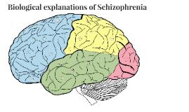 Biological explanations of Schizophrenia