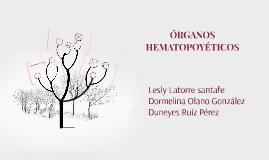 Copy of ORGANOS HEMATOPOYETICOS