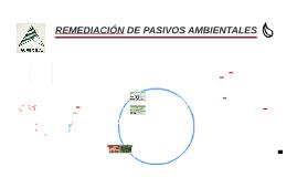 REMEDIACION DE PASIVOS AMBIENTALES