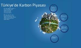 Copy of Türkiye'de Karbon Piyasası