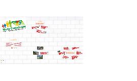 Muro Consciente
