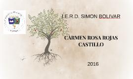CARMEN ROSA ROJAS CASTILLO