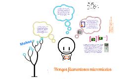 Copy of Hongos micromicetos
