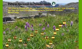 Parque Nacional Peneda- Gerês