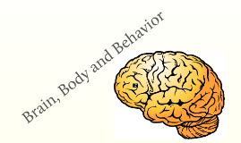 Brain, Body and Behavior