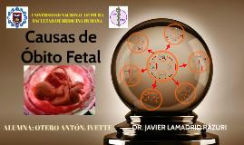 Causas de Obito Fetal