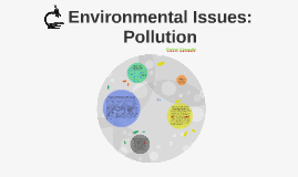 Environmental Issues - Pollution