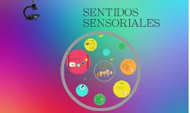 SENTIDOS SENSORIALES