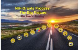 NIH Grants Process - The Big Picture