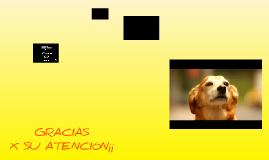 Copy of Agencia de publicidad Teran