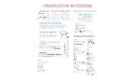 Copy of PRODUCTOS NOTABLES