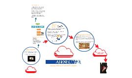 Copy of AIESEC Presentation to CECS