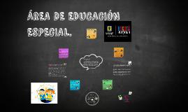 AREA DE EDUCACION ESPECIAL.