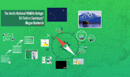 Copy of Oil Versus Wilderness in the Artic National Wildlife Refuge