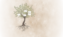 Week 12: Commitment Tree and Reflection
