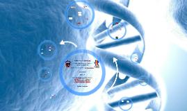 Copy of Metabolismo de Acidos Nucleicos