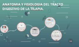 Copy of  ANATOMIA Y FISIOLOGIA DEL TRACTO DIGESTIVO DE LA TILAPIA.