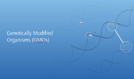 Genetically Modified Organisms (GMOs)