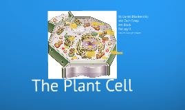 Plant Cell Prezi