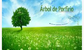 Copy of Árbol de Porfirio