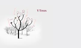 Y Trees