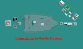 Biomecânica da Marcha Humana