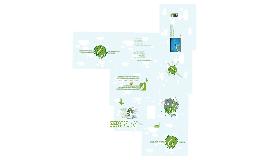 Copy of Verde