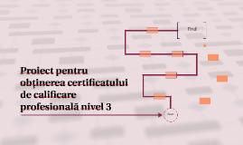 Proiect pentru obţinerea certificatului de calificare profes