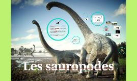 Les Sauropodes