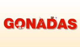 GONADA