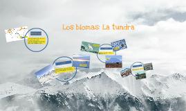 Los Biomas: La tundra