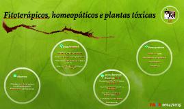 Fitoterápicos, homeopáticos e plantas tóxicas