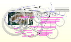 Softdrinks