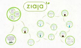 Firma ZIAJA  została założona