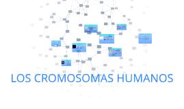 Copy of CROMOSOMAS