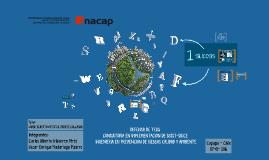 Seminario de Título: Implementación de Grupo Consultores C&O LTDA sobre el PLANESI