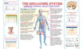 Unit 6 - Endocrine System