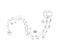 Copy of Copy of Recorrido Trayecto de Formación docente en entornos virtuales