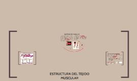Copy of Copy of TEJIDO MUSCULAR, CONTRACCION Y RELAJACION