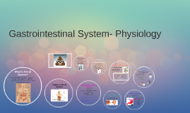 Copy of Gastrointestinal System- Physiology