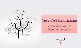 Copy of Copy of Garantías Individuales
