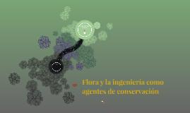Flora y la ingeniería como agente de conservación ambiental