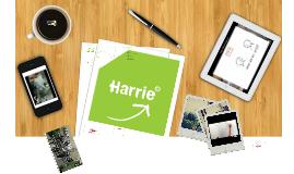 Copy of Werkdocument nieuwe Harrie dag 1