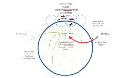VISION/ ZUKUNFTSKONZEPTION