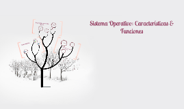 Sistema Operativo: Caracteristicas & Funciones