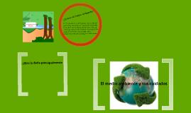 El medio ambiente y sus cuidados