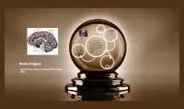 Copy of Brain Project