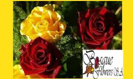 SISTEMA DE GESTION DE PRL BOSQUE FLOWERS