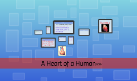 A Heart of a Human Body