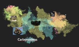 Carbonoideos